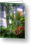 Trees Light Windows Greeting Cards - Franklin Park Conservatory Greeting Card by Mindy Newman