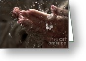 Lacquer Greeting Cards - Fresh Splash  Greeting Card by Jenny Rainbow