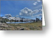 Nv Greeting Cards - Frog Lake Greeting Card by Brad Scott