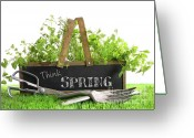 Beginnings Greeting Cards - Garden box with assortment of herbs and tools Greeting Card by Sandra Cunningham