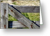 Fence Gate Greeting Cards - Gate Greeting Card by Les Cunliffe