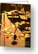 Lotus Leaves Greeting Cards - Golden Lotus Pond Greeting Card by Yali Shi