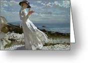Coastal Landscape Greeting Cards - Grace reading at Howth Bay Greeting Card by Sir William Orpen