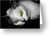 Laying Down Greeting Cards - Green Eyes Greeting Card by Angie McKenzie