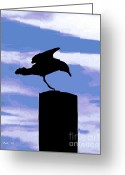 Seabirds Greeting Cards - Gull Silhouette Greeting Card by Dale   Ford