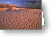 "\""guadalupe National Park\\\"" Greeting Cards - Gypsum Dunes Guadalupe Mountains Greeting Card by Tim Fitzharris"