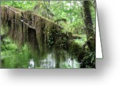 Luscious Greeting Cards - Hall of Mosses - Hoh Rain Forest Olympic National Park WA USA Greeting Card by Christine Till
