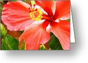 Molokai Greeting Cards - Happy Hibiscus Greeting Card by James Temple