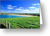 Beaches Greeting Cards - Harlyn Bay Greeting Card by Carl Whitfield
