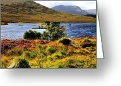 Picoftheday Greeting Cards - Highlands Greeting Card by Luisa Azzolini