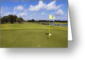 Golf Green Greeting Cards - Hole 4 on a Golf Course Greeting Card by Skip Nall