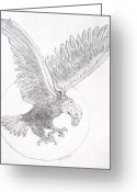 Drawing Of Bird Greeting Cards - Hungry one retake Greeting Card by Nancy Rucker