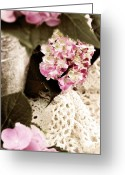 Selective Color Greeting Cards - Hydrangeas and Lace Greeting Card by Stephanie Frey