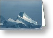 Immobile Greeting Cards - Iceberg Greeting Card by Doug Allan