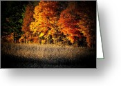 Indiana Autumn Greeting Cards - Indiana Autumn Greeting Card by Michael L Kimble