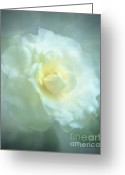 Texture Floral Mixed Media Greeting Cards - Into The Mist Greeting Card by Zeana Romanovna