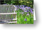 Cheekwood Botanical Gardens Greeting Cards - Irises  Greeting Card by Joy Neasley