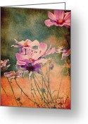 Flower Picture Greeting Cards - Its Summer Greeting Card by Angela Doelling AD DESIGN Photo and PhotoArt