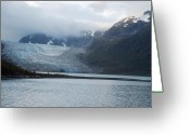 Ark Greeting Cards - John Hopkins Glacier Greeting Card by Michael Peychich