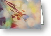 Flower Photograph Greeting Cards - Joyfulness Greeting Card by Aimelle