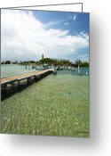 1860 Greeting Cards - Jupiter Lighthouse Florida Greeting Card by Michelle Wiarda
