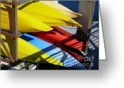 Light And Dark  Greeting Cards - Kayaks at the Union Marina Greeting Card by Terri Thompson
