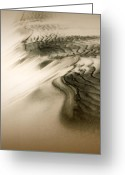 Kelso Greeting Cards - Kelso Dunes Greeting Card by Chris Brannen