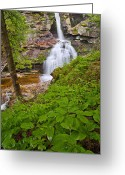 Kent Connecticut Greeting Cards - Kent Falls Greeting Card by Bill  Wakeley