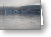 Folage Greeting Cards - Lake George New York Greeting Card by David Patterson