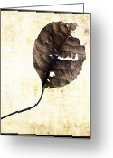 Autumnal Digital Art Greeting Cards - Leaf Greeting Card by Bernard Jaubert