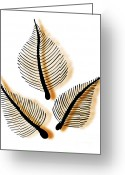 Funeral Greeting Cards - Leaves Greeting Card by Frank Tschakert