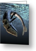 Seashell Art Greeting Cards - Leviathan Sea Monster, Artwork Greeting Card by Victor Habbick Visions