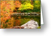 Fall River Scenes Painting Greeting Cards - Li12.23 Greeting Card by Shasta Eone