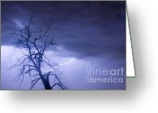 Unusual Lightning Greeting Cards - Lightning Tree Silhouette 29 Greeting Card by James Bo Insogna