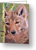 Wolves Drawings Greeting Cards - Lobo Greeting Card by Marilyn Smith