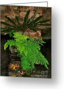 Textured Floral Greeting Cards - Maidenhair Fern Greeting Card by Kaye Menner