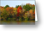 Country Greeting Cards - Michigan Fall Colors Greeting Card by Scott Hovind