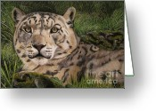 Animalportrait Pastels Greeting Cards - Mira - Snow Leopard Lady Greeting Card by Sabine Lackner