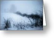 Snowscape Greeting Cards - Misty morning Greeting Card by Gun Legler
