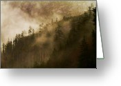 B.c Greeting Cards - Morning Fog Greeting Card by David  Naman