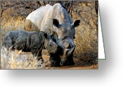Cute Rhinoceros Greeting Cards - Mother and Child Greeting Card by Paul Fell