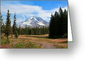Snow Boarding Greeting Cards - Mt. Hood National Forest Greeting Card by Athena Mckinzie