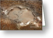 Sleeping Volcano Greeting Cards - Mudpot Greeting Card by Gaspar Avila