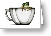 Amphibian Greeting Cards - Muggy Greeting Card by Christina Meeusen