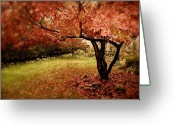 Red Leaves Greeting Cards - Mystical Maple Greeting Card by Jessica Jenney