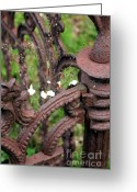 Fence Gate Greeting Cards - Nature Takes Over Greeting Card by Sophie Vigneault