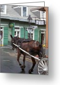 Street Greeting Cards - New Orleans - Bourbon Street Horse Greeting Card by Frank Romeo