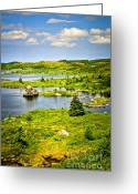 Scenic Greeting Cards - Newfoundland landscape Greeting Card by Elena Elisseeva