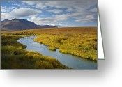 Klondike Greeting Cards - North Klondike River Flowing Greeting Card by Tim Fitzharris