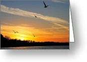 November Sunset Greeting Cards - November Sunset Greeting Card by Robert Harmon
